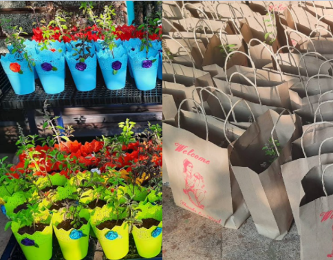 Gift bags with plants